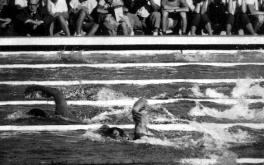 Final dos 1500 metros nado livre - foto retirada do site Best Swimming.