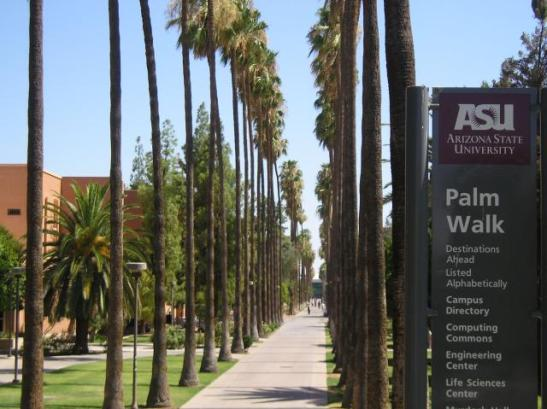 A famosa Palm Walk na ASU, meu caminho para as aulas de engenharia