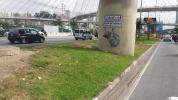 O Protesto da Capivara - grafite na Marginal Pinheiros