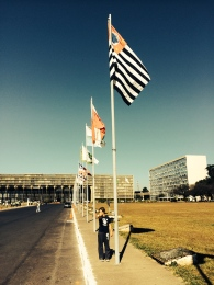 Bandeira paulista.