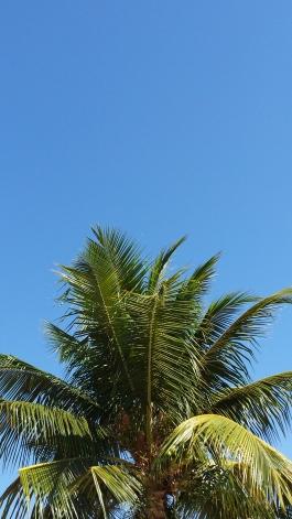Dias de céu azul em RP