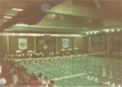 Reparem que o entorno da piscina não mudou nada!